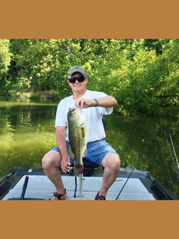 Lake barkley cabins campgrounds boat ramps hwy 274 for Ky and barkley lake fishing report